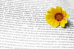κείμενο λουλουδιών στοκ φωτογραφία με δικαίωμα ελεύθερης χρήσης