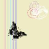 κείμενο πεδίων πεταλούδων Στοκ εικόνα με δικαίωμα ελεύθερης χρήσης