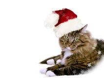 κείμενο santa θέσεων Χριστουγέννων γατών εμβλημάτων σας Στοκ Εικόνα