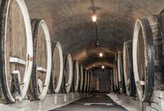 Κελάρι κρασιού Στοκ εικόνες με δικαίωμα ελεύθερης χρήσης