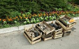 Κενά δοχεία για τα σπορόφυτα σε ένα ξύλινο κιβώτιο κοντά σε ένα κρεβάτι λουλουδιών Στοκ εικόνες με δικαίωμα ελεύθερης χρήσης