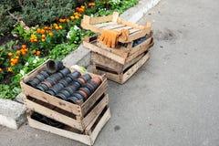 Κενά δοχεία για τα σπορόφυτα σε ένα ξύλινο κιβώτιο κοντά σε ένα κρεβάτι λουλουδιών Στοκ Εικόνες