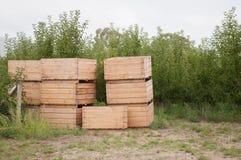 Κενά κιβώτια μήλων Στοκ Εικόνες