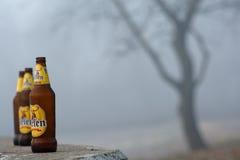 Κενά μπουκάλια αρχικά Στοκ Εικόνες