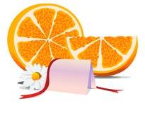 κενές πορτοκαλιές ευχα Στοκ Εικόνα