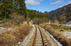 Κενές σιδηροδρομικές γραμμές τροχιοδρομικών γραμμών, με τα πράσινα δέντρα στοκ εικόνες