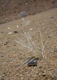 κενή αυλή γραμμών πυρομαχι Στοκ φωτογραφίες με δικαίωμα ελεύθερης χρήσης