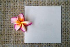 Κενή κάρτα με το λουλούδι plumeria και το υπόβαθρο καλαθοπλεχτικής Στοκ εικόνα με δικαίωμα ελεύθερης χρήσης