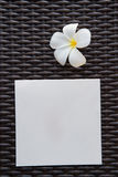 Κενή κάρτα με το λουλούδι plumeria και το υπόβαθρο καλαθοπλεχτικής Στοκ Εικόνες