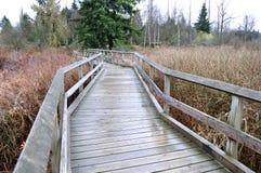 Κενή και γαλήνια γέφυρα για πεζούς σε ένα πάρκο στοκ φωτογραφίες με δικαίωμα ελεύθερης χρήσης