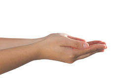 κενή λήψη θέσης χεριών Στοκ Εικόνες