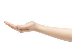 Κενή νέα θηλυκή απελευθέρωση εκμετάλλευσης χεριών που απομονώνεται στο άσπρο υπόβαθρο Στοκ Εικόνες
