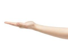 Κενή νέα θηλυκή απελευθέρωση εκμετάλλευσης χεριών που απομονώνεται στο άσπρο υπόβαθρο Στοκ Φωτογραφίες