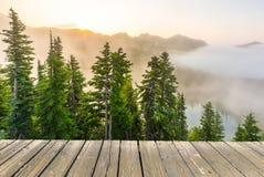 Κενή ξύλινη επιτραπέζια κορυφή γεφυρών έτοιμη για το montage επίδειξης προϊόντων με το δασικό υπόβαθρο Στοκ Εικόνες