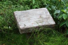 Κενή πέτρα τσιμέντου βάθρων Στοκ Εικόνες