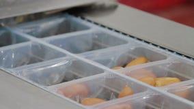 Κενή συσκευασία της βιομηχανίας κρέατος λουκάνικων απόθεμα βίντεο