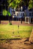 Κενή ταλάντευση παιδιών σε ένα δέντρο στον κήπο Στοκ Εικόνες