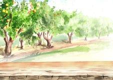 Κενοί πίνακας και κήπος της Apple στην προοπτική Συρμένο χέρι υπόβαθρο watercolor ελεύθερη απεικόνιση δικαιώματος
