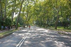 Κεντρικές οδοί πάρκων στις 6 Αυγούστου 2013 στη Νέα Υόρκη, Νέα Υόρκη Στοκ εικόνες με δικαίωμα ελεύθερης χρήσης