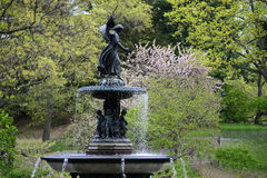κεντρική άνοιξη πάρκων Στοκ εικόνες με δικαίωμα ελεύθερης χρήσης