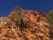 Κεντρικοί απότομοι βράχοι της Αυστραλίας στοκ φωτογραφίες με δικαίωμα ελεύθερης χρήσης