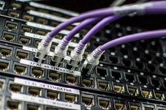 Κεντρικοί υπολογιστές 4 Στοκ Εικόνες