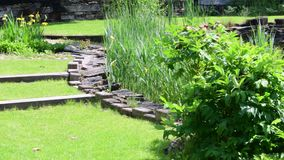 Κεντρικός την άνοιξη χρόνος κήπων δενδροκηποκομία απόθεμα βίντεο
