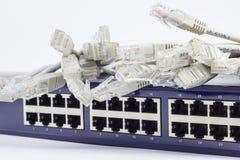 Κεντρικός υπολογιστής δικτύων Στοκ Εικόνα