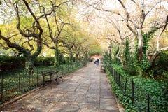 κεντρικό μονοπάτι πάρκων Στοκ εικόνα με δικαίωμα ελεύθερης χρήσης