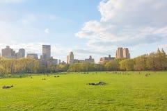 Κεντρικό πάρκο της Νέας Υόρκης στην ηλιόλουστη ημέρα Στοκ Εικόνες