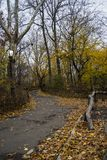 κεντρικό πάρκο φθινοπώρο&upsilon Της περιφέρειας του κέντρου πόλη του Μανχάταν Νέα Υόρκη στοκ εικόνες