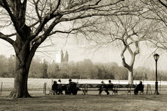 κεντρικό πάρκο Στοκ Εικόνα