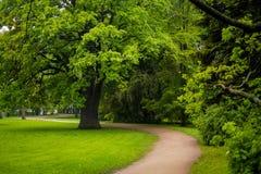 Κεντρικό πάρκο Kirov με τον παλαιό δρύινο και κυρτό δρόμο στοκ φωτογραφίες