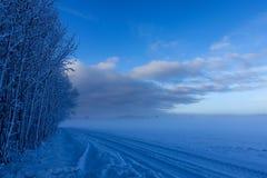 Κενός αγροτικός δρόμος κατά μήκος της άκρης του δάσους στοκ εικόνες