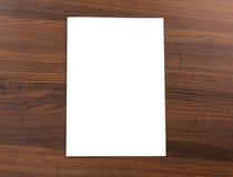 Κενός κατάλογος, φυλλάδιο, χλεύη επάνω στοκ εικόνες με δικαίωμα ελεύθερης χρήσης