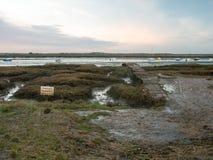 Κενός λιμενοβραχίονας πακτώνων δυτικού mersea διάβασης πεζών πορειών τοπίων ξύλινος στοκ φωτογραφίες