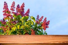 Κενός ξύλινος πίνακας με το θολωμένο υπόβαθρο άνοιξη των ανθίζοντας ιωδών λουλουδιών Μπορέστε να χρησιμοποιηθείτε για το προϊόν ε στοκ φωτογραφία