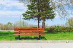 Κενός ξύλινος πάγκος στο πάρκο Στοκ εικόνες με δικαίωμα ελεύθερης χρήσης