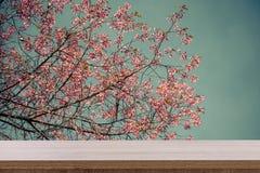 Κενός ξύλινος πίνακας για το προϊόν ή το montage και ρόδινο άνθος με στοκ εικόνες