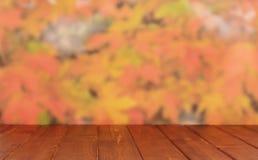 Κενός ξύλινος πίνακας Στοκ Εικόνες