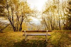 Κενός πάγκος πάρκων στο δάσος βουνών με την ειδυλλιακή χρυσή άποψη Στοκ Εικόνες