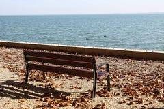 Κενός πάγκος στις ακτές της λίμνης Balaton Στοκ φωτογραφία με δικαίωμα ελεύθερης χρήσης