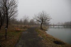 Κενός πάγκος στο πάρκο κοντά στη λίμνη μέχρι την ομιχλώδη ημέρα, minimalistic κρύα σκηνή εποχής πάγκος στη λίμνη στην ομίχλη στο  στοκ φωτογραφία με δικαίωμα ελεύθερης χρήσης
