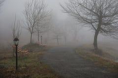 Κενός πάγκος στο πάρκο κοντά στη λίμνη μέχρι την ομιχλώδη ημέρα, minimalistic κρύα σκηνή εποχής πάγκος στη λίμνη στην ομίχλη στο  στοκ εικόνες