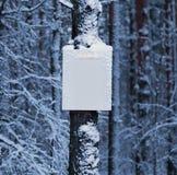Κενός πίνακας στο χειμερινό δάσος Στοκ εικόνα με δικαίωμα ελεύθερης χρήσης