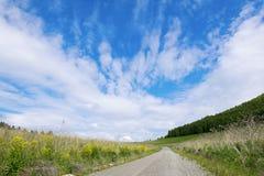 Κενός δρόμος επαρχίας μέσω των τομέων στον ουρανό στοκ εικόνα