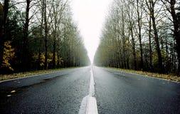 Κενός δρόμος κοντά σε Izborsk Στοκ Φωτογραφία