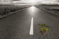 Κενός δρόμος με μια τρύπα προς τον ήλιο ρύθμισης Στοκ Φωτογραφία