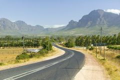 Κενός δρόμος στην περιοχή κρασιού Stellenbosch, έξω από το Καίηπ Τάουν, Νότια Αφρική Στοκ Εικόνες