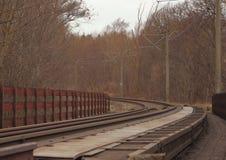 Κενός σιδηρόδρομος αν και δάσος στο χειμώνα Στοκ εικόνα με δικαίωμα ελεύθερης χρήσης